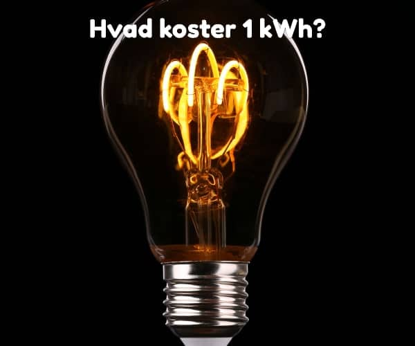 Hvad koster 1 kWh?